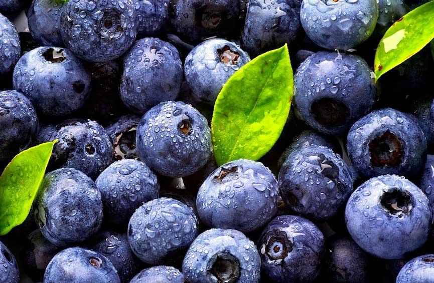 10 alimentos anti-inflamatorios… más 1
